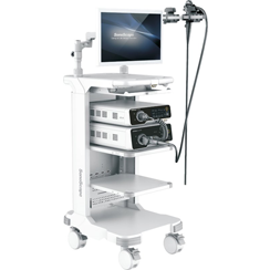 Flexible Endoscopy, HD-500
