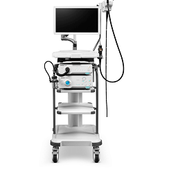 Endoscopy HD-350